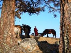 mongolei16.jpg